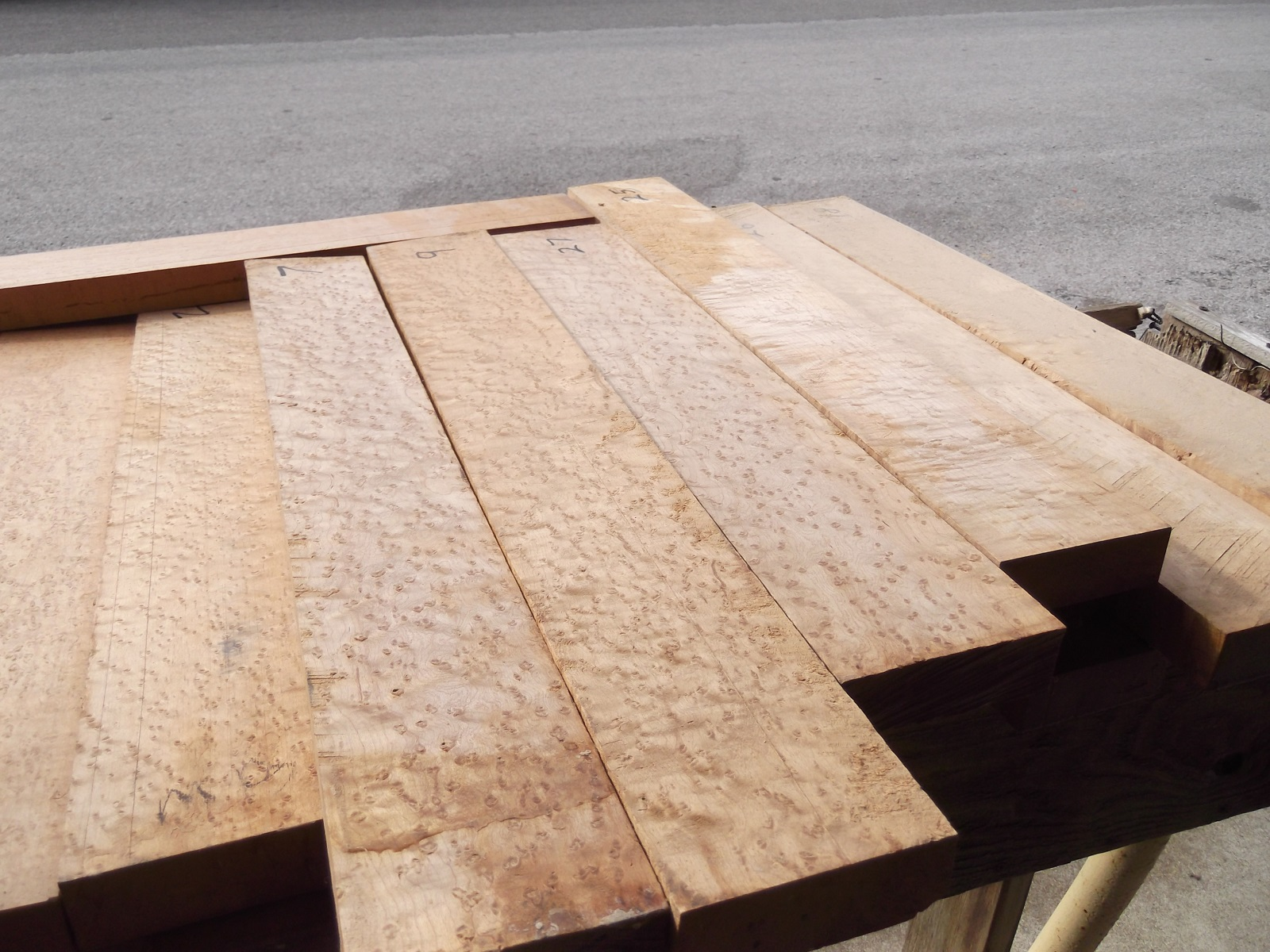 Birdseye Maple Not A Separate Species Of Wood Is The Result An Unexplained Phenomenon That Results In Typical Grain