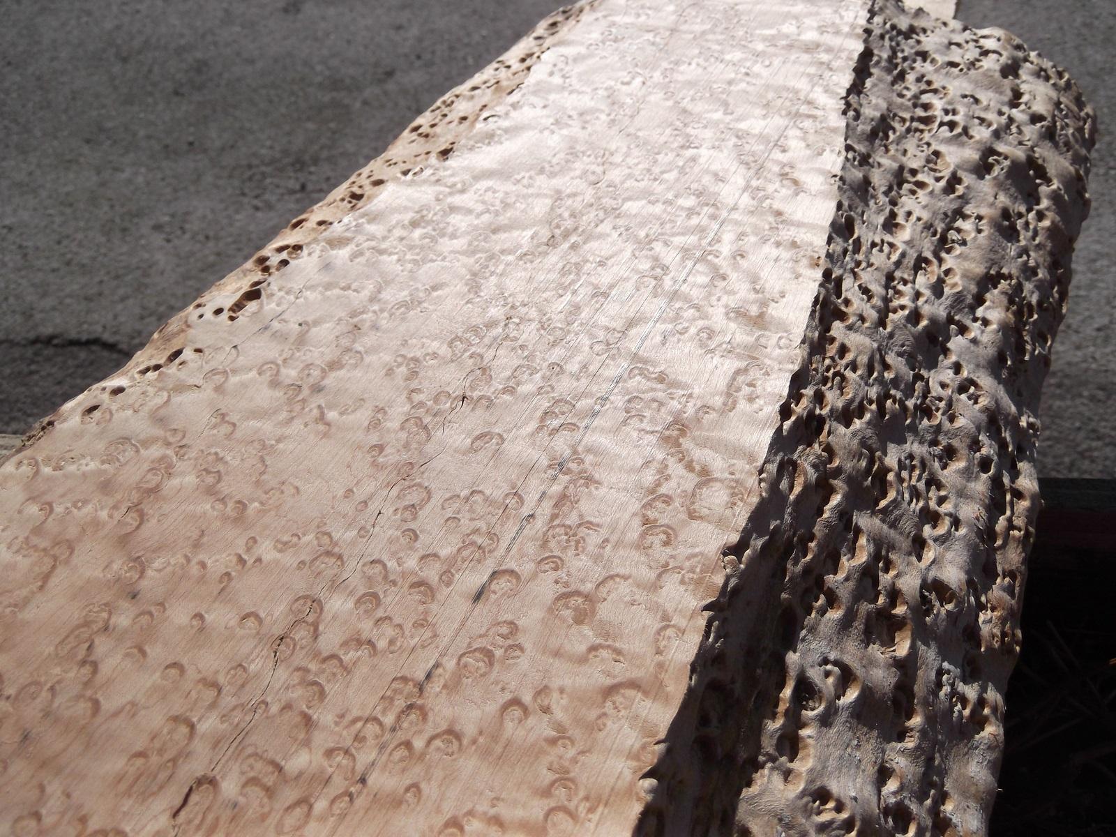 birdseye maple wood    exotic figured maple